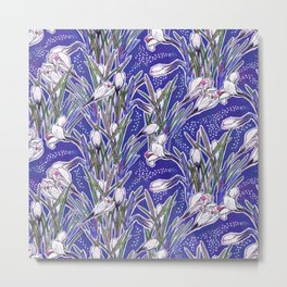 White Crocuses Spring Flowers Botanical Floral Pattern Ultramarine Blue Metal Print