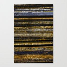 Empilement 3 Canvas Print