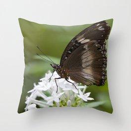 Little Brown Butterfly Throw Pillow
