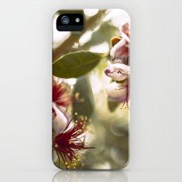 Botanical  iPhone Case