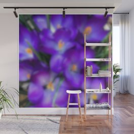 Crocus in the Early Morning Haze Wall Mural