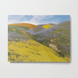 Bloomtown California Metal Print