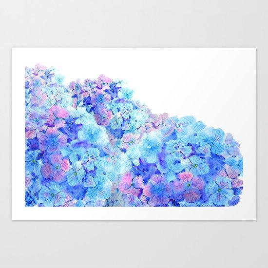 mountain of hydrangea Art Print