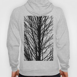 Branches 5 Hoody