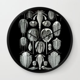 Trilobites and Fossils by Ernst Haeckel Wall Clock