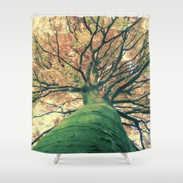 The big strong tree Shower Curtain