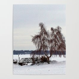 Weeping Willow on the Frozen Lake Poster