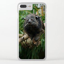 Binturong Clear iPhone Case