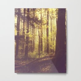 She Experienced Heaven on Earth Among the Trees Metal Print