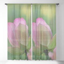 Lotus flowers Sheer Curtain