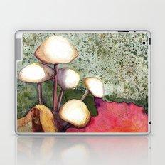 Adirondack Mushrooms Laptop & iPad Skin