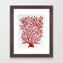 Red Coral Framed Art Print