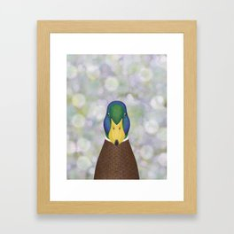 mallard duck woodland animal portrait Framed Art Print