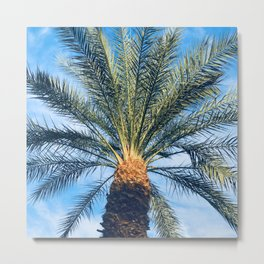 Sun-Dipped Tropical Palm Tree in Azure Blue Sky Metal Print
