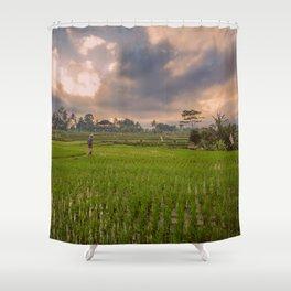 Bali rice field Shower Curtain