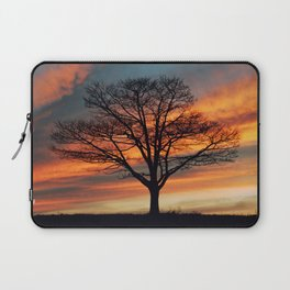 Branching Silhouette Laptop Sleeve