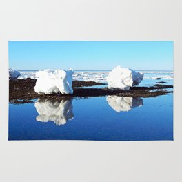 Baby Icebergs on the Tidal Shelf Rug