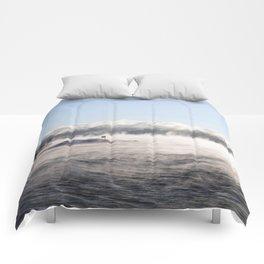 -19 degrees Celsius Comforters