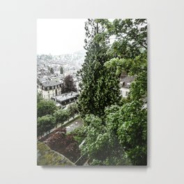 European View Metal Print