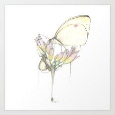 Born Under Grace Art Print
