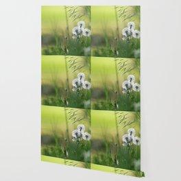 Dandelion Pattern Wallpaper