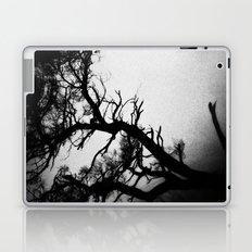 Tree in the fog Laptop & iPad Skin