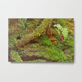 Moss Hysteria Metal Print
