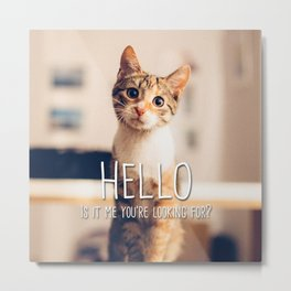 Cat - Hello is it me you're looking for? Metal Print
