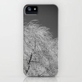 Spring Breeze, Port Hope, Ontario iPhone Case