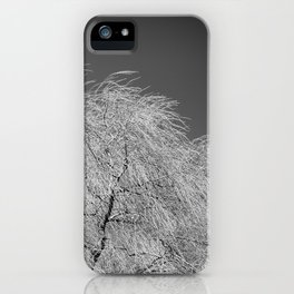 Spring Breeze, Port Hope, Ontario iPhone Case