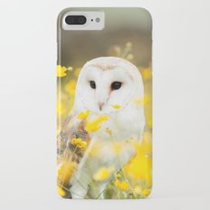 Australian Barn Owl (Tyto Alba) Slim Case iPhone 7 Plus
