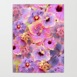 Tropical hibiscus patterns Flower Floral Flowers Poster