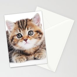 Lonely Kitten Stationery Cards