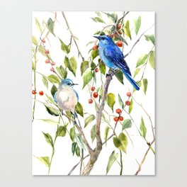 Mountain Bluebirds and Berries Canvas Print