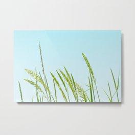 Nature photography Green grass I Metal Print