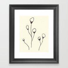 Cotton Doodle Framed Art Print