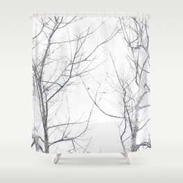 Faded Winter... Tree Branches Shower Curtain