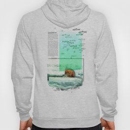 Alaskan Brown Bear Hoody