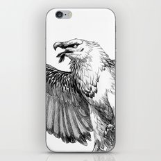 Lammergeier iPhone & iPod Skin