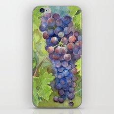 Grapes Watercolor Fruit Food Wine Lovers iPhone & iPod Skin