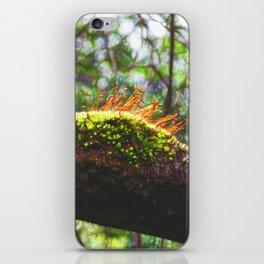 Beautiful abstract moss in rain forest iPhone Skin
