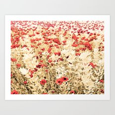 Field of Blooms Art Print