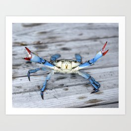New Orleans Bayou Crab Art Print