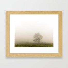 Through The Haze Framed Art Print