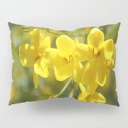 Fragrant Yellow Flowers Of Carolina Jasmine Pillow Sham