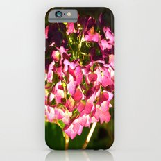 Late Fall iPhone 6s Slim Case