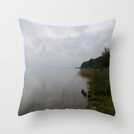 Moody Morning At The Lake Throw Pillow
