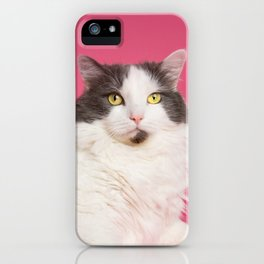 Cat on Pink Centerfold iPhone Case