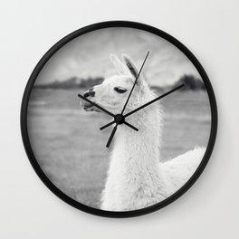 Mountain Llama Wall Clock