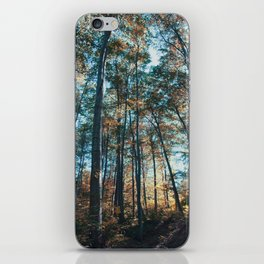 into the woods 07 iPhone Skin
